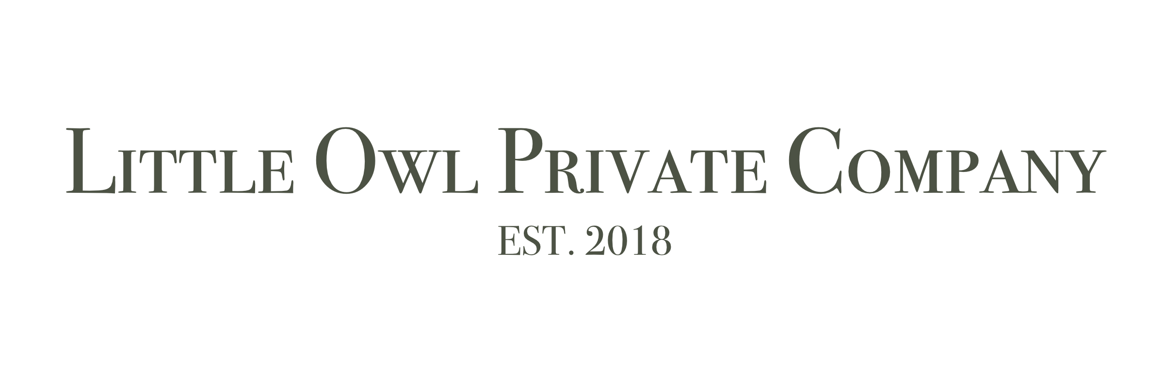 Little Owl Private Company